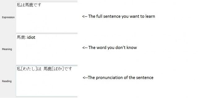sentence21