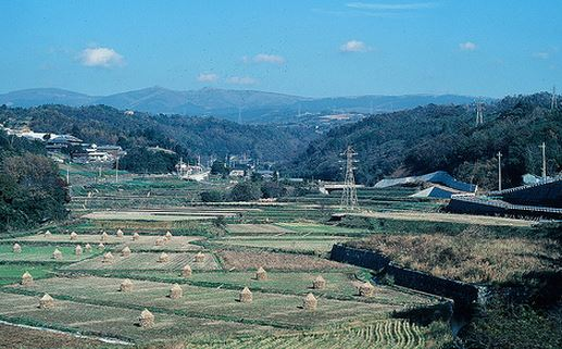 WWOOF - Getting a Job on a Japanese Farm