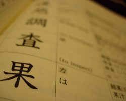 Reviewing The Kanji Review