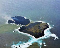 新島と西之島の合体で5つのとんでもない提案