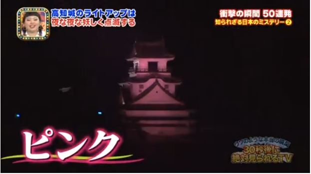 Light Up Your Own Japanese Castle 9