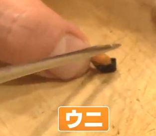 The Mini Sushi Diet - Guaranteed Success