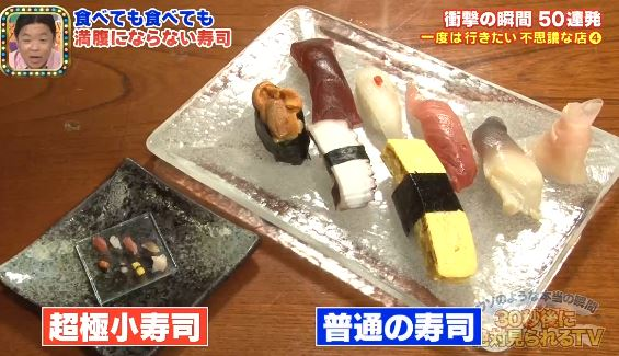 The Japanese Mini Sushi Diet - Guaranteed Success