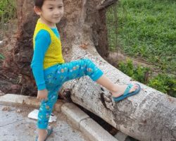 Teaching My 5-Year-Old Child Japanese Kana With Anki